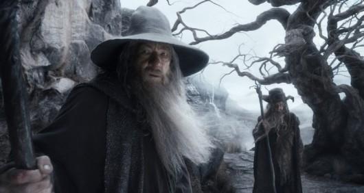 the-hobbit-la-desolazione-di-smaug-ian-mckellen-interpreta-un-preoccupato-gandalf-293636